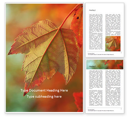 Nature & Environment: Maple Leaf at Fall Word Template #16064