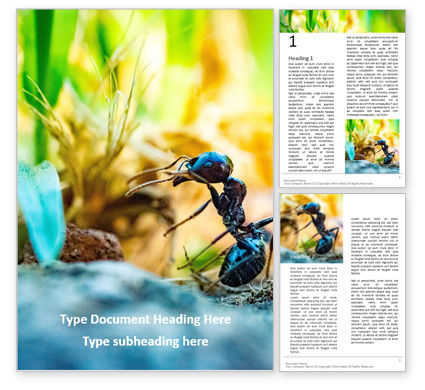 Nature & Environment: A Busy Small Ant Word Template #16103