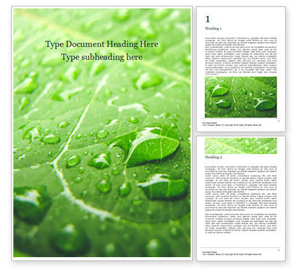Nature & Environment: green leaf with drops of water - 無料Wordテンプレート #16145