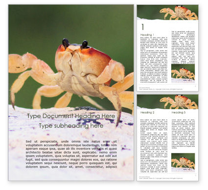 Nature & Environment: Crab on Rock Word Template #16194