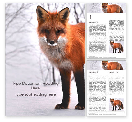 General: Red Fox in Winter Word Template #16201