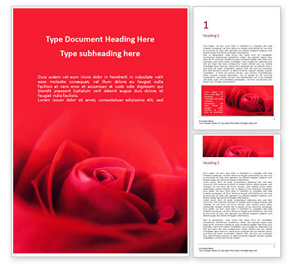 Nature & Environment: Beautiful Red Rose Close Up Word Template #16437