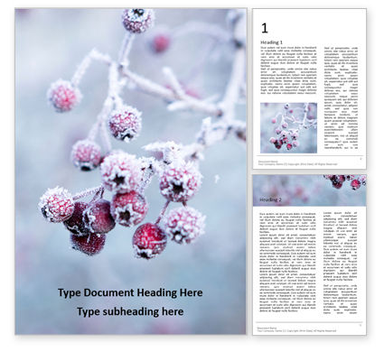 Nature & Environment: Modello Word - Frosted hawthorn berries in the garden presentation #16496