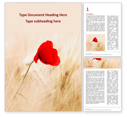 Nature & Environment: Red poppy in the field presentation免费Word模板 #16543