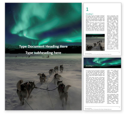 Nature & Environment: Northern Lights Excursion with Dog Sledding in the Arctic Wilderness Presentation #16561
