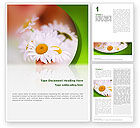 Nature & Environment: Daisy Word Template #02268