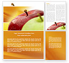 Agriculture and Animals: Red And Green Apples Word Template #04330
