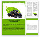 Agriculture and Animals: Blackcurrant Word Template #05931