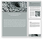 Financial/Accounting: Money Black Hole Word Template #06504