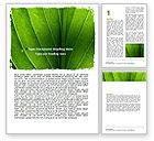 Nature & Environment: 워드 템플릿 - 녹색 잎 줄무늬 #06686