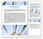 Holiday/Special Occasion: Camomile in Dew Word Template #06698