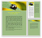 Agriculture and Animals: Bug On Green Leaf Word Template #06797