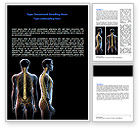 Medical: Vertebral Column Word Template #06862