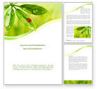 Nature & Environment: Ladybird on Leaf Word Template #08195