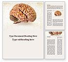 Medical: Human Brain As Anatomical Preparation Word Template #09280