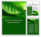Nature & Environment: Shiny Green Leaf Word Template #09768