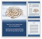 Medical: Human Brain Preparation Word Template #09833
