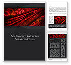 Financial/Accounting: Binary Options Word Template #10789