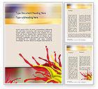 Abstract/Textures: Red and Yellow Splash Paint Word Template #11196