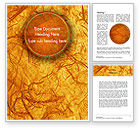 Abstract/Textures: Orange Wall Texture Word Template #11477