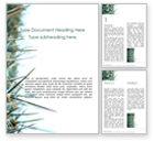Nature & Environment: Plantilla de Word gratis - primer plano de espinas de cactus #15858