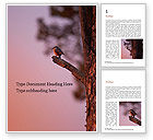 Nature & Environment: A Black Bird Perching on Tree Branch Word Template #15868