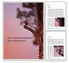 Nature & Environment: Modèle Word gratuit de un oiseau noir perché sur une branche d'arbre #15868