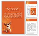 General: Plantilla de Word gratis - retrato lindo cachorro sobre fondo naranja #15876