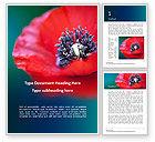 Nature & Environment: Modèle Word gratuit de closeup coquelicot rouge #15878