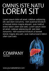 Medical: Modèle de Publicité de foie #03025