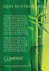 Nature & Environment: Plantilla de publicidad - arboleda de bambú #04227
