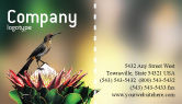 Nature & Environment: Cape Sugarbird Business Card Template #02052