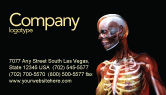 Medical: Female Anatomy Breast And Facial Bones Business Card Template #03404