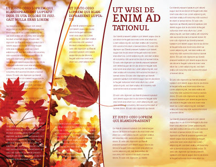 Falling Leaves In The Sunset Brochure Template, Inner Page, 01454, Nature & Environment — PoweredTemplate.com