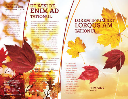 Falling Leaves In The Sunset Brochure Template, Outer Page, 01454, Nature & Environment — PoweredTemplate.com
