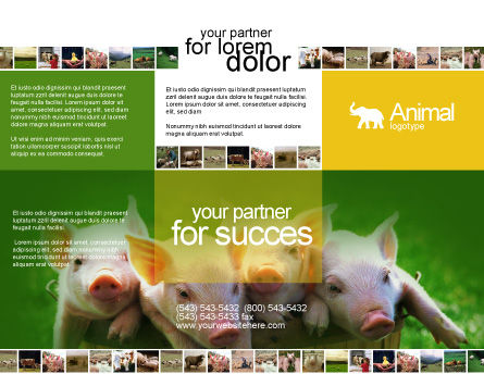 Pig Brochure Template, Outer Page, 01708, Agriculture and Animals — PoweredTemplate.com