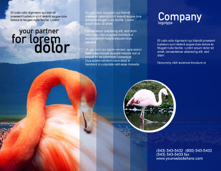 Flamingo Brochure Template, Outer Page, 01725, Agriculture and Animals — PoweredTemplate.com