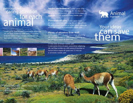Pampa Brochure Template, Outer Page, 01950, Agriculture and Animals — PoweredTemplate.com