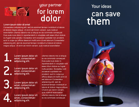 Heart Model Brochure Template Inner Page