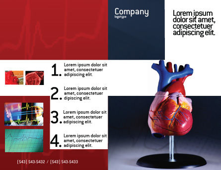 Heart Model Brochure Template Outer Page