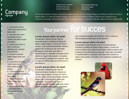 Cape Sugarbird Brochure Template, Inner Page, 02052, Nature & Environment — PoweredTemplate.com