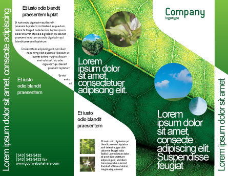Botany Brochure Template, Outer Page, 02176, Nature & Environment — PoweredTemplate.com