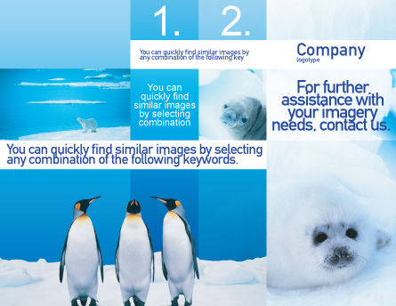 Fur-Seal Brochure Template, Outer Page, 02230, Agriculture and Animals — PoweredTemplate.com