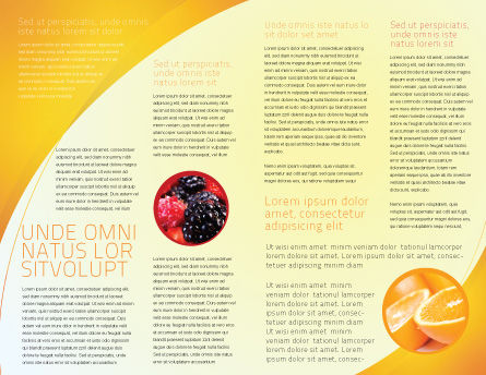 Orange Juice Brochure Template Inner Page