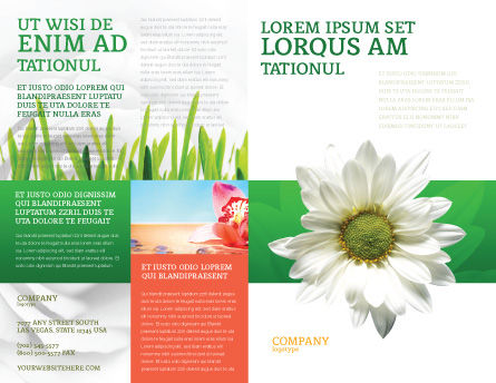 Ox-eye Daisy Brochure Template, Outer Page, 02533, Nature & Environment — PoweredTemplate.com