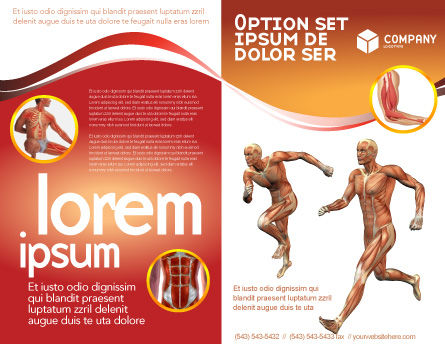 Muscular System Brochure Template Outer Page