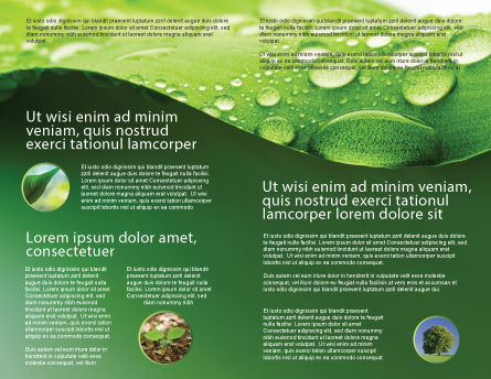 Fresh Dew On The Green Leaf Brochure Template, Inner Page, 03376, Abstract/Textures — PoweredTemplate.com
