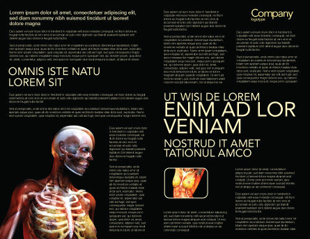 Female Anatomy Breast And Facial Bones Brochure Template, Inner Page, 03404, Medical — PoweredTemplate.com