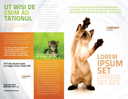 Kitten Brochure Template, Outer Page, 03459, Agriculture and Animals — PoweredTemplate.com