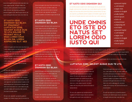 Red Texture Brochure Template Inner Page